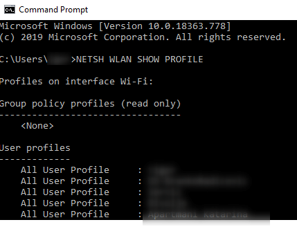 NETSH WLAN SHOW PROFILE in Command Prompt