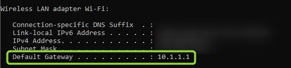 Default Gateway 10.1.1.1